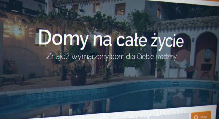 domuly_szablon1_glowna_wiz